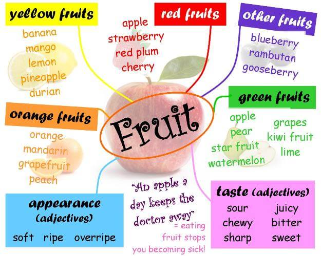 mind_map_for_fruit_v2